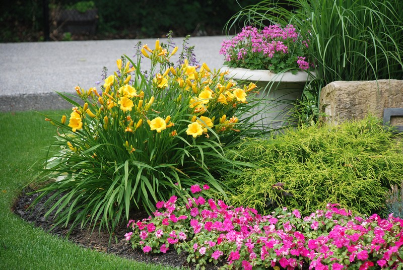 landscaping contractor in raleigh